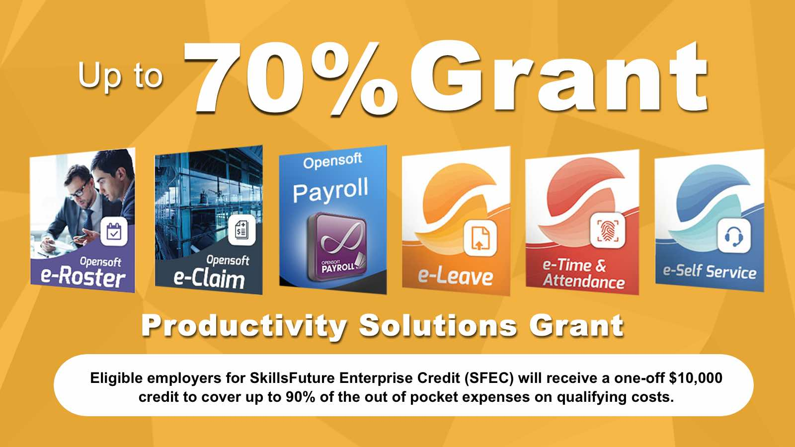 PSG Grant - HR Solutions: Payroll, Leave, Claims, Staff